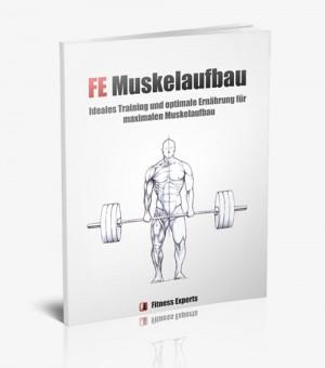 FE Muskelaufbau