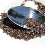 Omega-3 Fettsäuren (Fischöl): tierisch oder pflanzlich? Einnahme, Wirkung, Gefahren