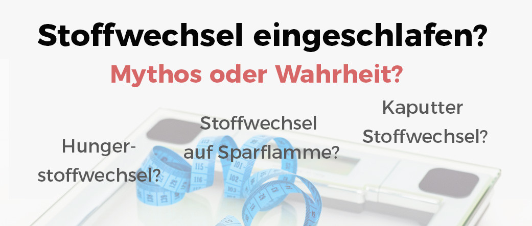 Hungerstoffwechsel & eingeschlafener Stoffwechsel - was..